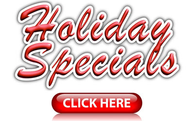Holiday Specials at Gale Force Web Pros LLC
